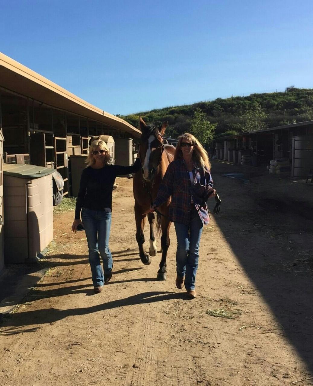 Hb Equestrian Center Home Realty Digital Magazine
